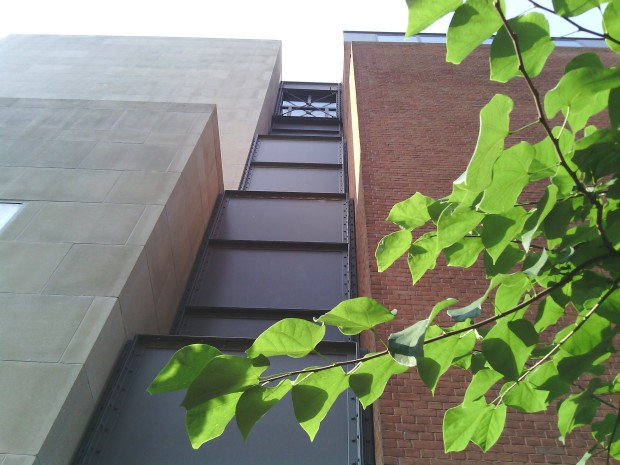 This is an image of the outer side of the United States Holocaust Memorial Museum with a sole branch in front of it.
